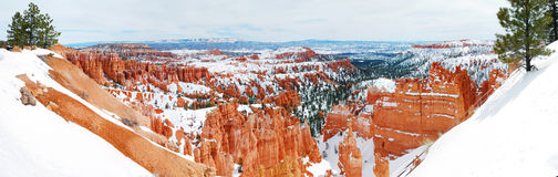 Bryce canyon panorama with snow Royalty Free Stock Photo