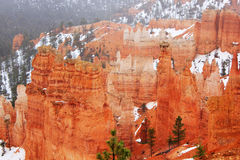Bryce Canyon panorama with snow in Winter with red rocks. Stock Image