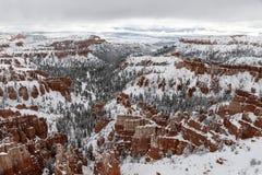 Bryce Canyon panorama, träd och hoodos som täckas med snö Fotografering för Bildbyråer