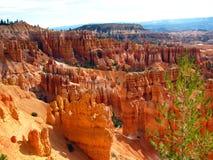 Bryce Canyon park rocks Stock Photos