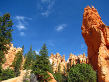 Bryce Canyon park spires Royalty Free Stock Photography
