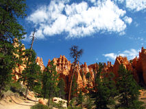 Bryce Canyon park spires Royalty Free Stock Photo