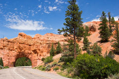 Bryce Canyon Red Canyon Utah Royalty Free Stock Photography