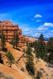 Bryce Canyon Rim Trail Royalty Free Stock Photo