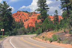 Bryce Canyon road Royalty Free Stock Images