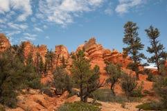 Bryce Canyon rojo Foto de archivo