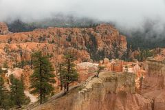 Bryce Canyon in the fog royalty free stock image