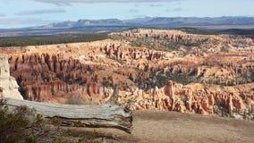 Bryce Canyon sikt på våren Arkivbilder