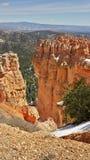 Bryce Canyon sikt på våren Royaltyfri Fotografi