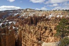Bryce Canyon in Sneeuw Stock Afbeeldingen
