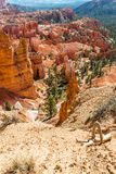 Bryce canyon Stock Photography