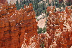 Bryce Canyon Sun and Shade. Have to visit Bryce Canyon with a high sky sunny day for photographic delight Stock Photography