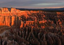 Bryce Canyon at sunrise. Bryce Canyon Ampitheater as the sun rises Royalty Free Stock Photos