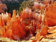 Bryce Canyon Sunrise Stock Image