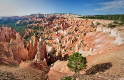 Bryce canyon, sunrise point, Utah Stock Images