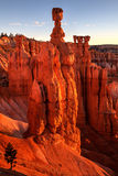 Bryce Canyon Sunrise On Thors-Hamer Utah Royalty-vrije Stock Foto