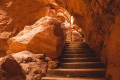 Bryce Canyon trappa Royaltyfri Foto