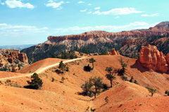 Bryce Canyon Trial. A trail through Bryce Canyon Royalty Free Stock Photo