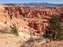 Bryce Canyon. Trip 2014 summer Stock Images