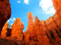 Bryce Canyon - U.S.A. America immagini stock libere da diritti