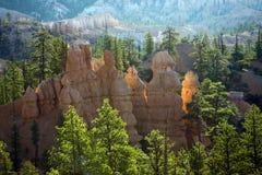 Bryce Canyon-Unglücksboten in den ersten Strahlen der Sonne Stockfotos