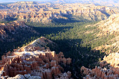 Bryce canyon, USA Royalty Free Stock Images