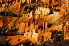 Bryce canyon, ut Royalty Free Stock Photography