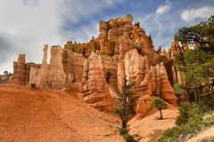 Bryce canyon, ut Stock Images