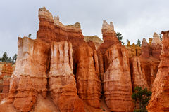 Bryce canyon, ut Royalty Free Stock Photo