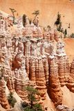 Bryce Canyon in Utah Stock Photography