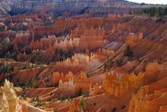 Bryce Canyon, Utah. Bryce Canyon impression in Utah Stock Photos