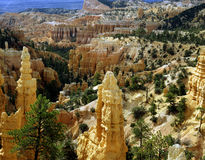 Bryce Canyon, Utah Royalty Free Stock Image