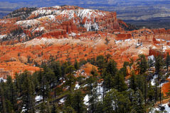 Bryce Canyon Utah Royalty Free Stock Photo