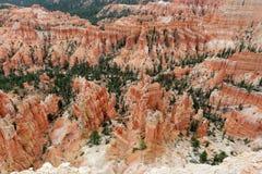 Bryce Canyon, Utah, de V.S. Stock Afbeelding