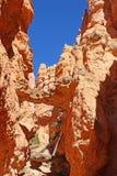 Bryce Canyon, Utah Royalty Free Stock Image