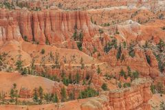 Bryce Canyon Utah los E.E.U.U. fotografía de archivo libre de regalías