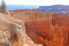 Bryce Canyon, Utah. Bryce Canyon National Park in Utah Stock Image