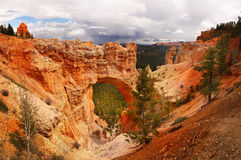 Bryce Canyon Utah Panorama Imagem de Stock Royalty Free