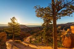 Bryce Canyon, Utah, paysage de perspective en automne au lever de soleil image libre de droits