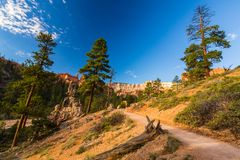 Bryce Canyon, Utah, paysage de perspective en automne au lever de soleil Photo stock
