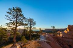 Bryce Canyon Utah, perspektivlandskap i höst på soluppgång Arkivbild
