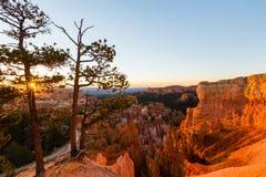 Bryce Canyon Utah, perspektivlandskap i höst på soluppgång Royaltyfri Fotografi