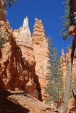 Bryce Canyon, Utah Stock Photos