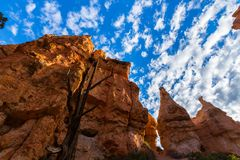 Bryce Canyon, Utah, perspective scenery in autumn at sunrise Royalty Free Stock Photos