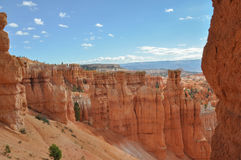 Bryce Canyon;  Utah; Usa; Royalty Free Stock Photos