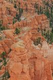 Bryce Canyon Utah USA. Beautiful Landscape of Bryce Canyon National Park royalty free stock images
