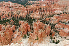Bryce Canyon, Utah, USA Stock Image