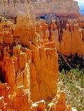 Bryce Canyon in Utah Stock Photos