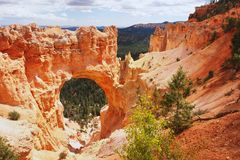 Bryce Canyon, Utah Stock Photography