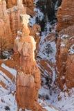 Bryce Canyon Utah Winter Landscape Stockfotos